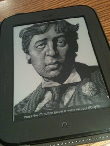 Nook E-Reader. Photo by Endpaper Review.